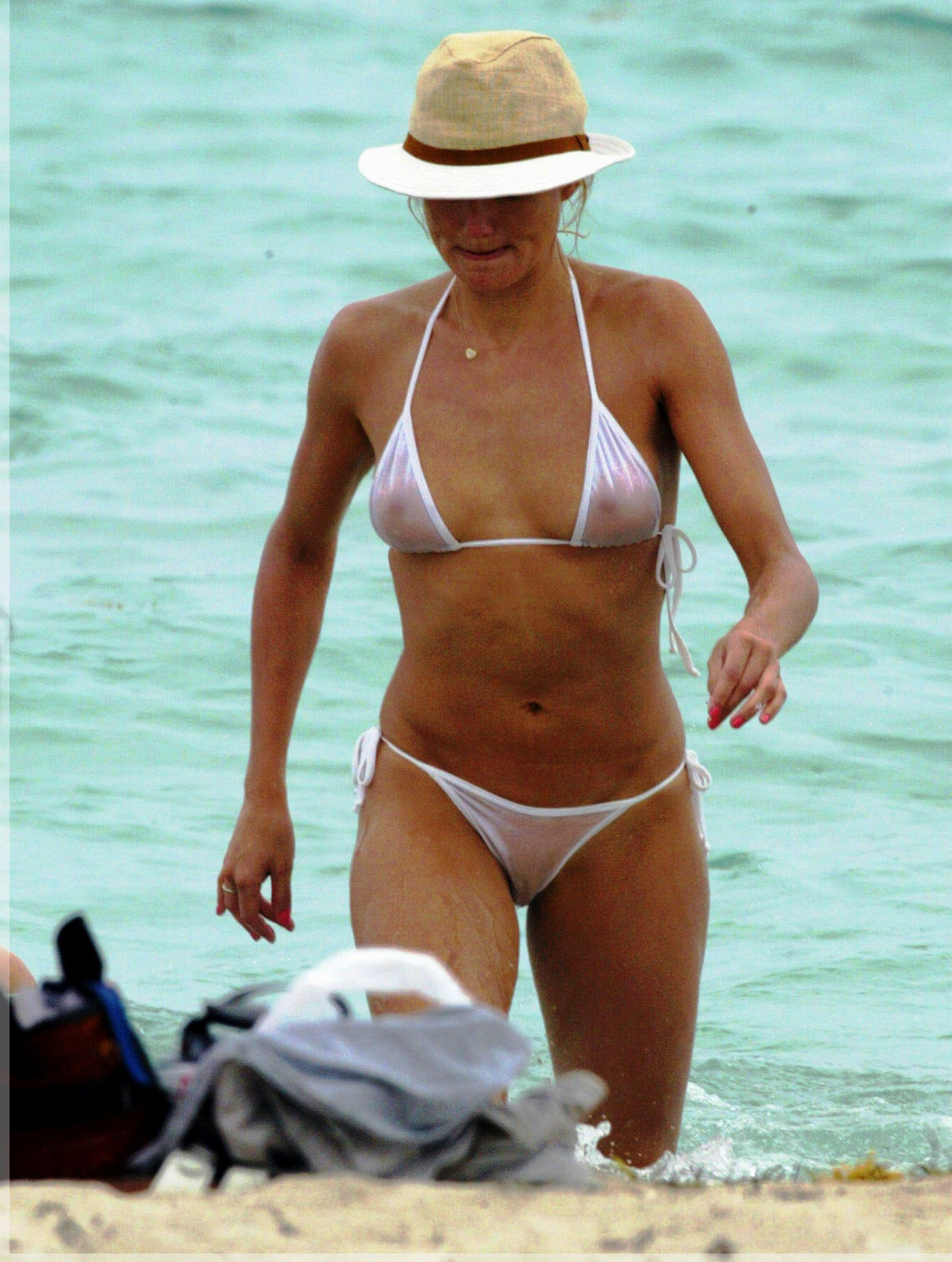 Cameron diaz see through bikini curious topic