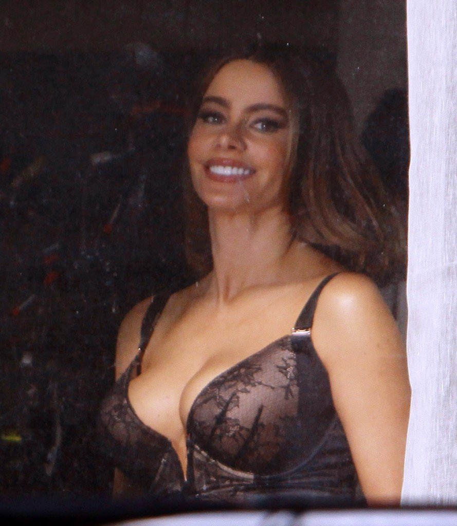 Sofia Vergara in her bra