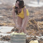 ashley greene bathing suit (3)