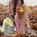 ashley greene bathing suit (6)