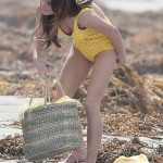 ashley greene bathing suit (1)